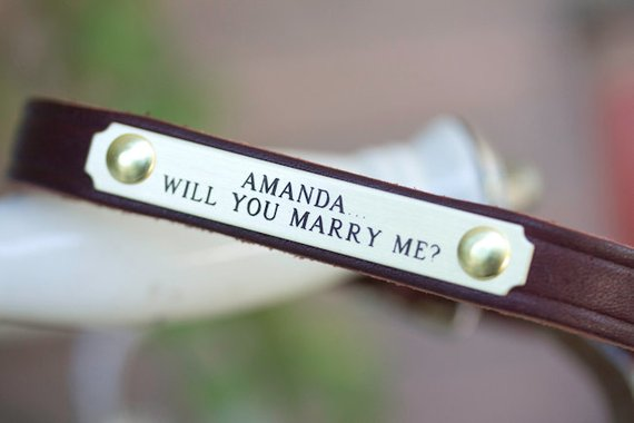 Proposal Dog Collar